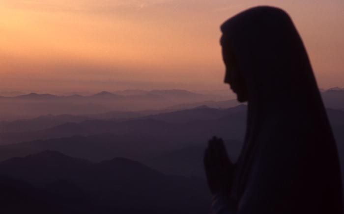 La oración tiene múltiples derroteros