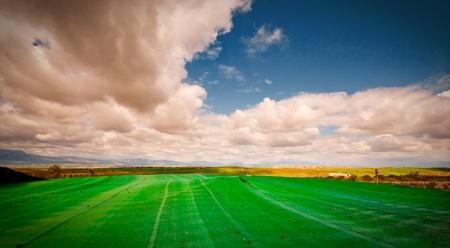 Orar cambia nuestra percepción de la realidad y trae el Cielo a la Tierra