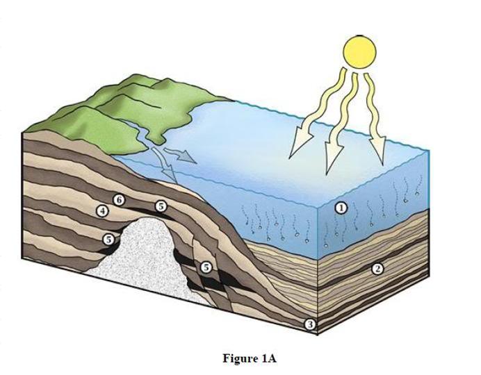 petróleo bajo tierra 2
