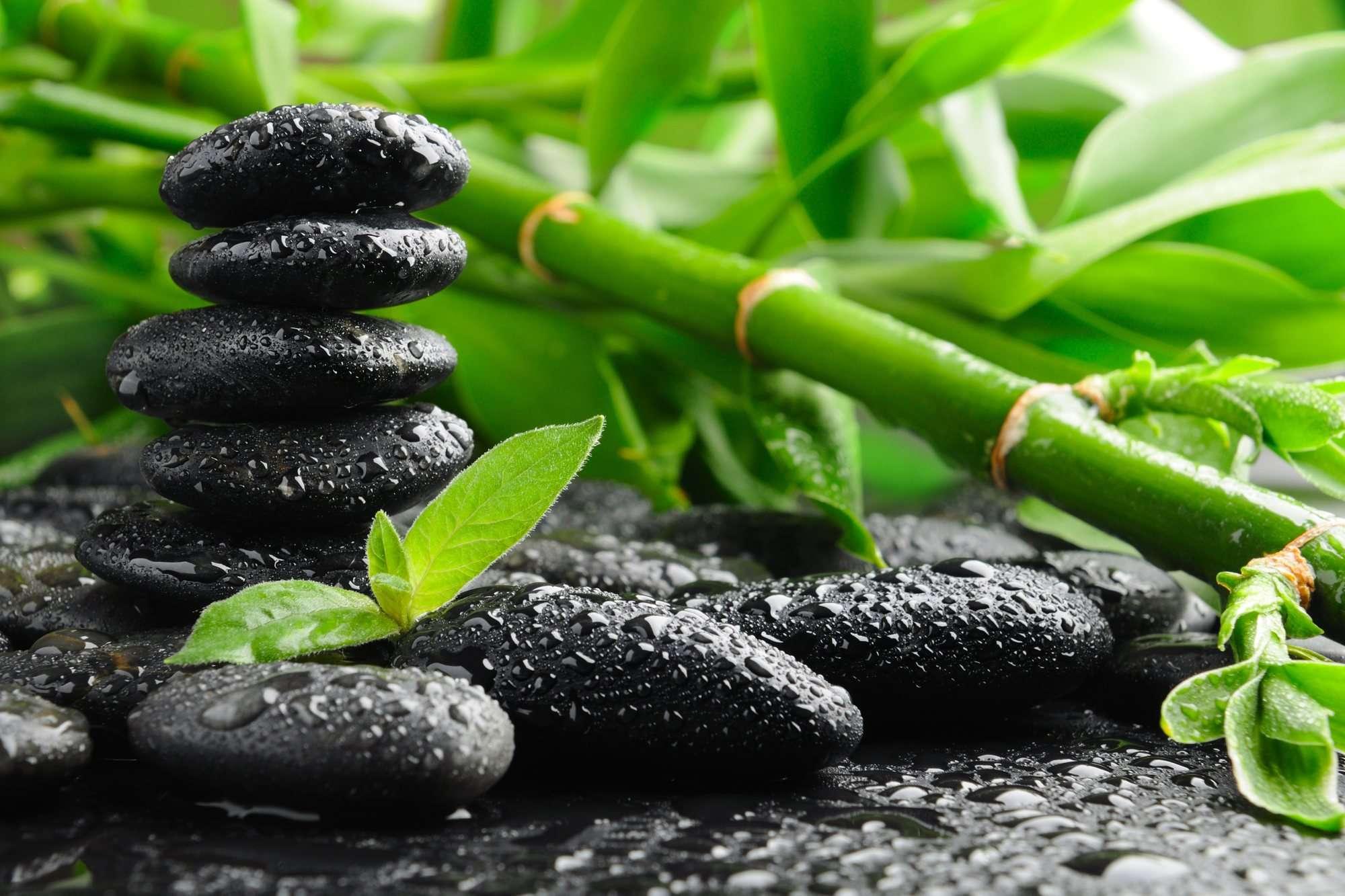 Relatos espirituales del budismo zen carmelo urso for Figuras para jardin zen